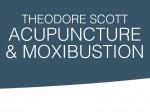 Theodore Scott Acupuncture